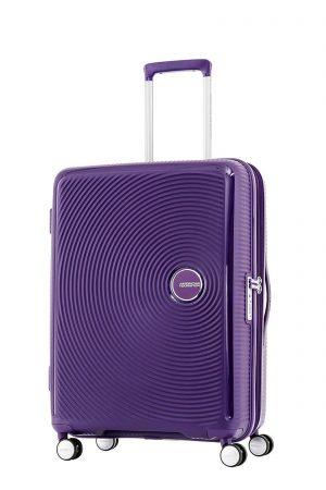 Curio purple 55cm